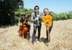 Cat Klezmer Trio